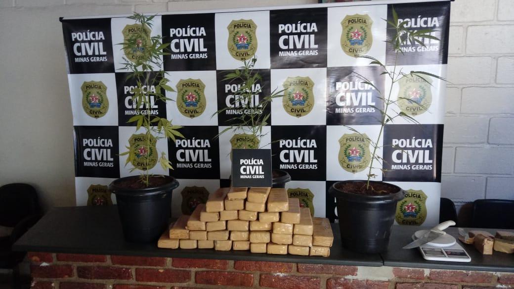 Polícia apreende 34 barras de maconha na zona rural de Sete Lagoas - Foto: Divulgação/PCMG
