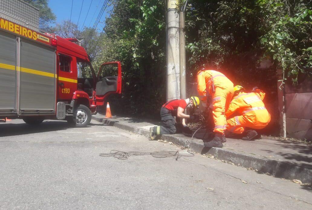 Corpo é encontrado por Bombeiros em caixa de fiação da Cemig em Belo Horizonte - Foto: Divulgação/Corpo de Bombeiros