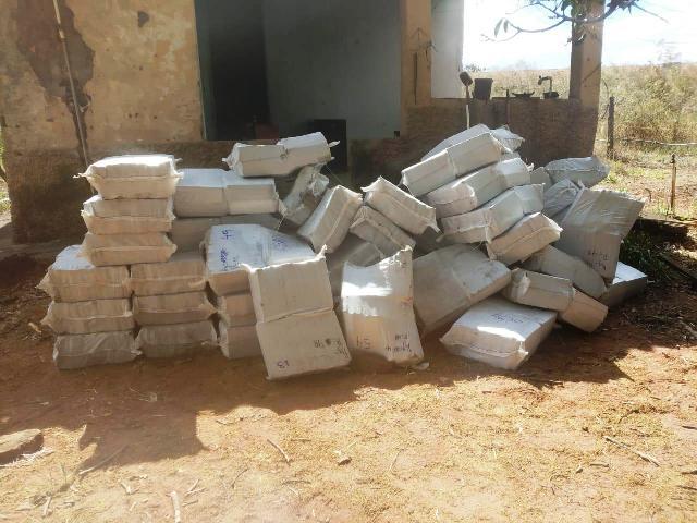 Operação conjunta resulta em apreensões de drogas em Uberaba - Foto: Divulgação/PCMG