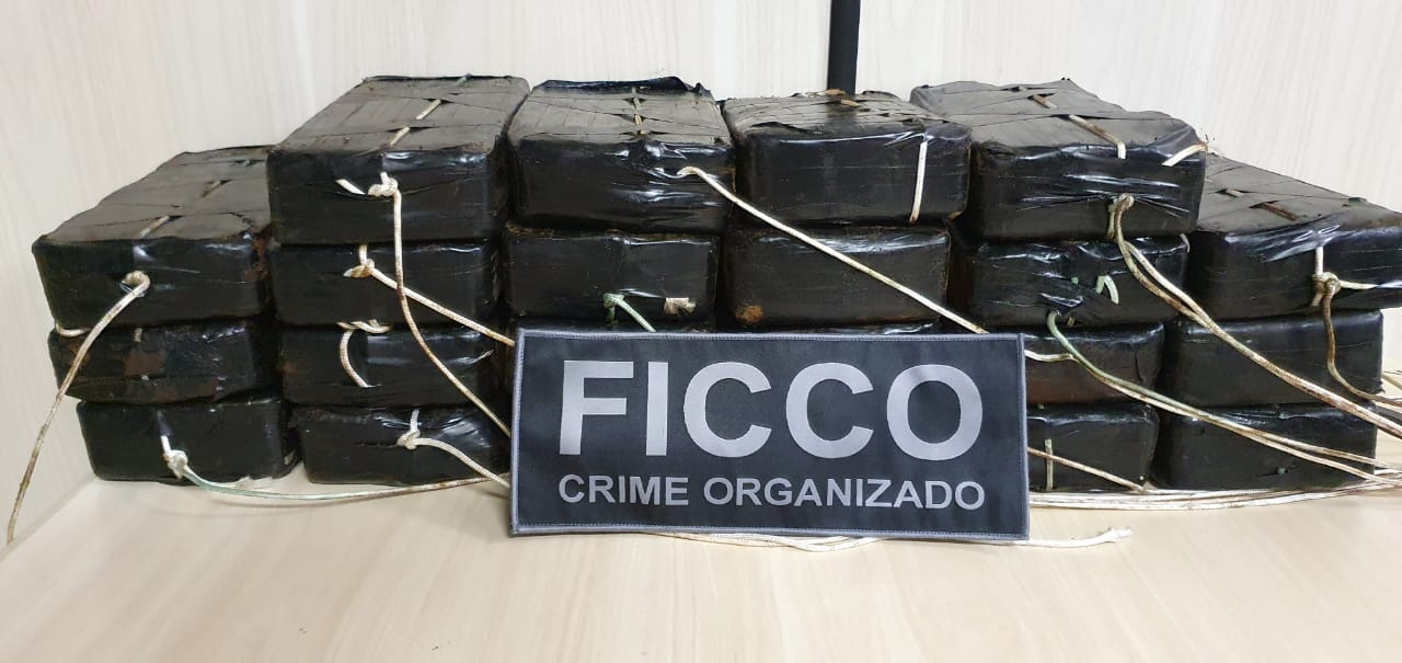 Ficco apreende mais de 23 quilos de cocaína em Uberaba - Foto: Divulgação/PCMG