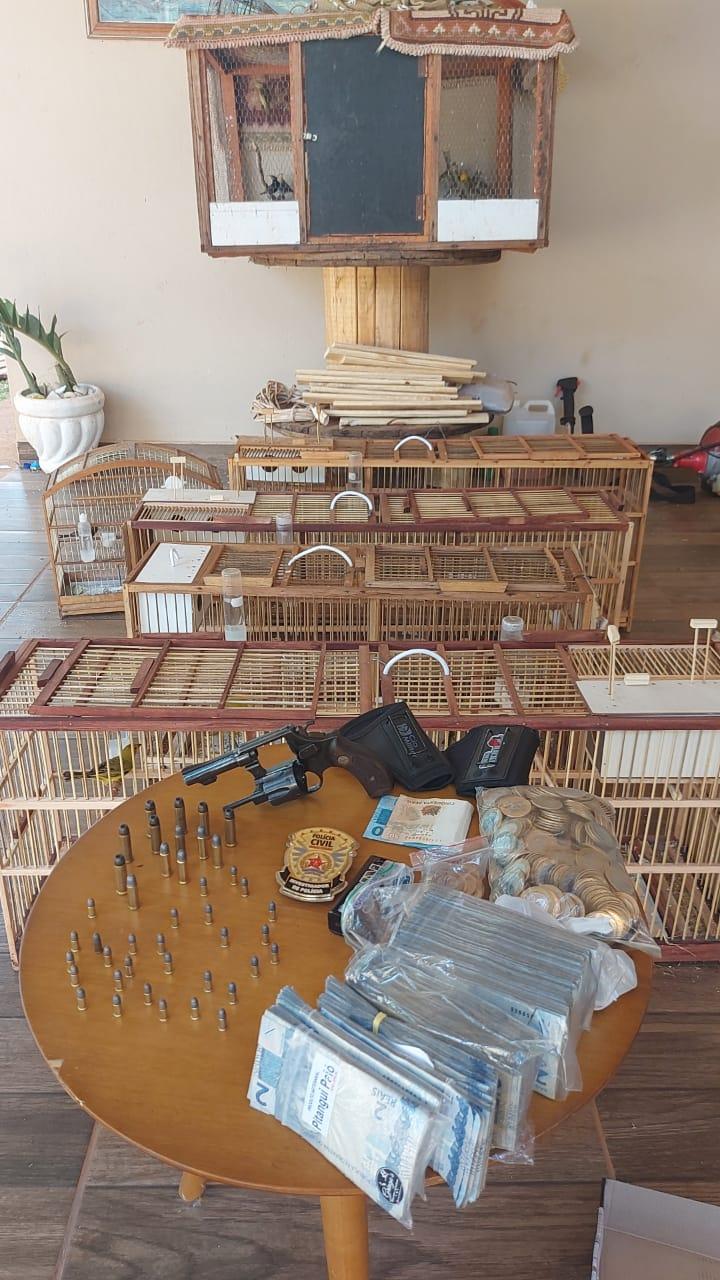 Polícia Civil apreende 35 aves silvestres em casa da zona rural em Itatiaiuçu - Foto: Divulgação/Polícia Civil
