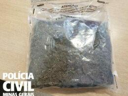 Suspeito é preso com significativa quantidade de skunk em BH - Foto: Divulgação/PCMG