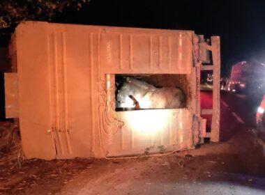 Motorista morre após caminhão capotar em acidente na BR-365 em Patrocínio - Foto: Corpo de Bombeiros/Divulgação