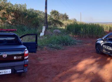 Polícia prende oito suspeitos por homicídios em Uberlândia - Foto: Divulgação/PCMG