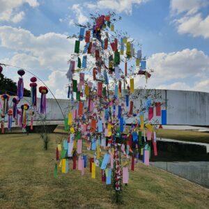 Matsuri Minas Japão acontece amanhã em Belo Horizonte - Foto: ACCTBB/Divulgação