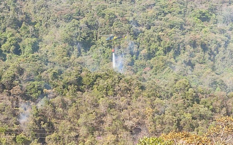 Incêndio atinge vegetação do Parque das Mangabeiras, em BH - Foto: Divulgação/Corpo de Bombeiros