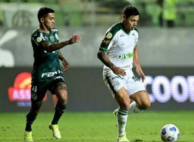 Palmeiras perde para América-MG e cai para terceiro no Brasileiro - Foto: Mourão Panda/América