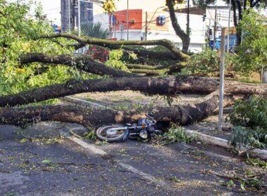 Pouso Alegre tenta se recuperar após forte chuva - Foto: Divulgação/Prefeitura de Pouso Alegre